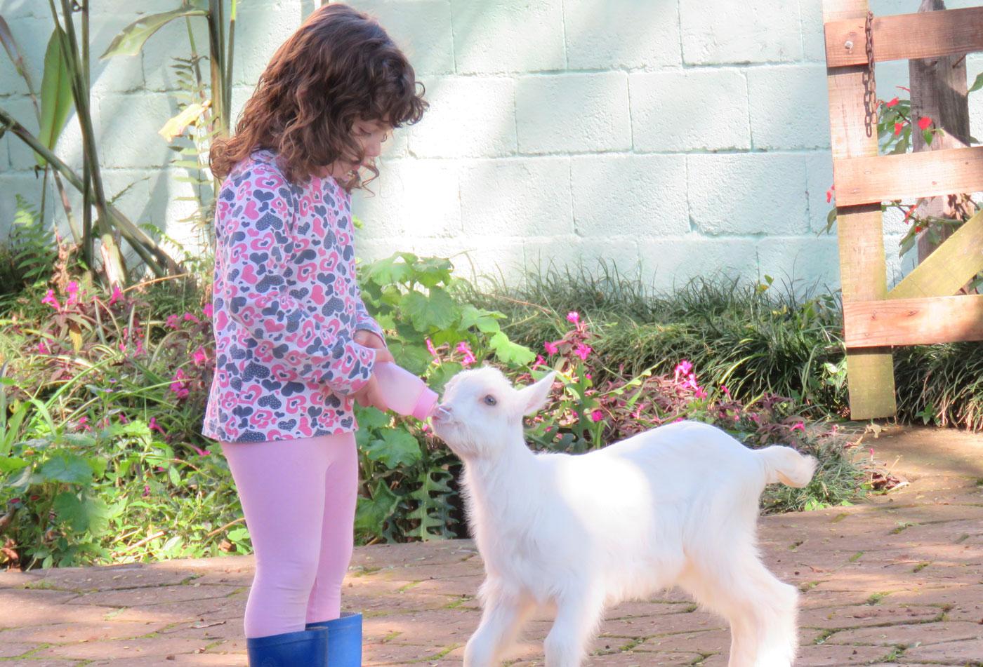 As melhores coisas para fazer em São Lourenço com crianças