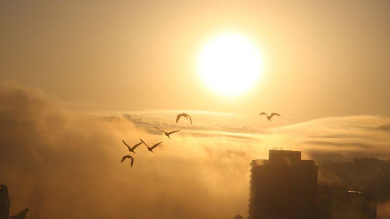 Ecoturismo em São Lourenço: Férias conscientes que podem mudar sua vida